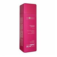 Hair Company Head Wind Extra-Gloss Shampoo - Шампунь Экстра-блеск 250 мл