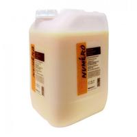 Brelil Numero Oat Shampoo - Шампунь с вытяжкой из овса для использования в салоне 10 л