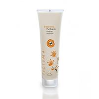 Teotema Sebum Specific Purifying Treatment - Очищающая глина для кожи головы 150 мл