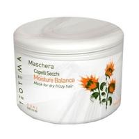 Teotema Moisture Balance Mask - Маска увлажняющая для волос 500 мл