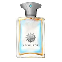 Amouage Portrayal For Men - Парфюмерная вода 100 мл (тестер)