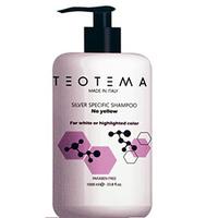 Teotema Silver Shampoo - Тонирующий серебряный шампунь 1000 мл