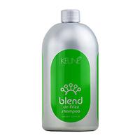 Keune Blend De-Frizz Shampoo - Шампунь «Контроль» 1000 мл