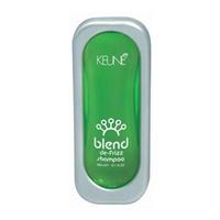 Keune Blend De-Frizz Shampoo - Шампунь «Контроль» 300 мл