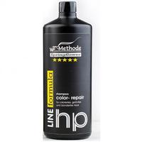 WT-Methode Color Repair Shampoo - Шампунь для окрашенных, тонированных и осветленных волос 1000 мл